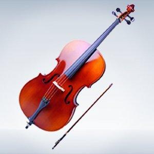 Смычковые струнные инструменты